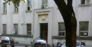 tribunale vibo