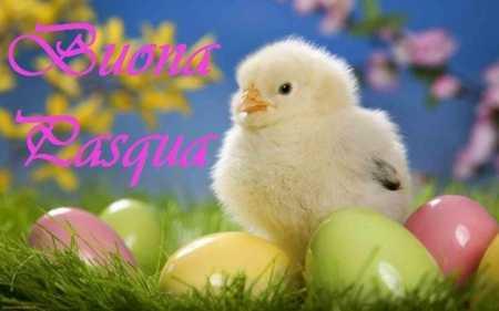 Buona Pasqua 2015 Componimento poetico di  Domenico Caruso