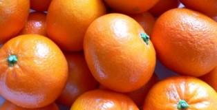 Clementine5
