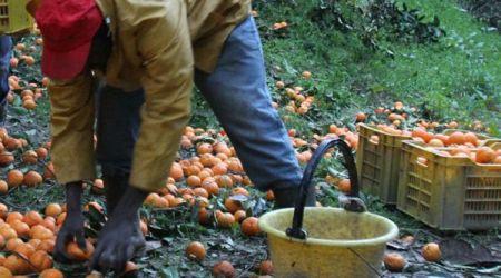 In Calabria dilaga il lavoro in nero