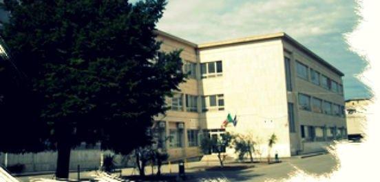 """Accorpamento """"Gemelli Careri"""" e Liceo scientifico Oppido, il Cdu di Taurianova annuncia battaglia"""