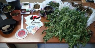 marijuana coltivata in casa a reggio