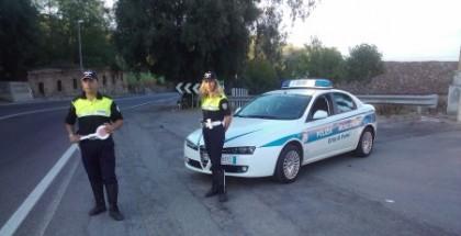 polizia municipale palmi new