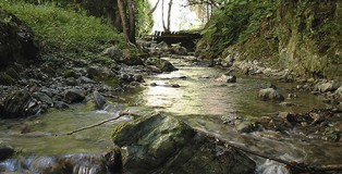 terme_luigiane_fiume