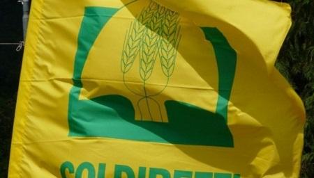 """""""Dieta mediterranea fondamentale per salute cittadini"""" Lo dichiara Coldiretti Calabria"""