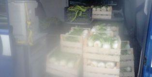 friutta e verdura sequestrati a lamezia